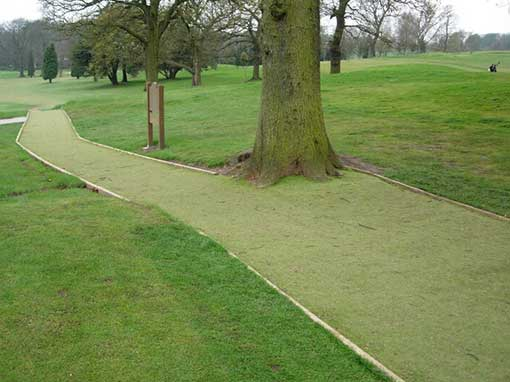 Artificial Pathway Sand Filled RSVT