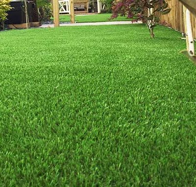 Lush Fringe Putting Green Surround Turf